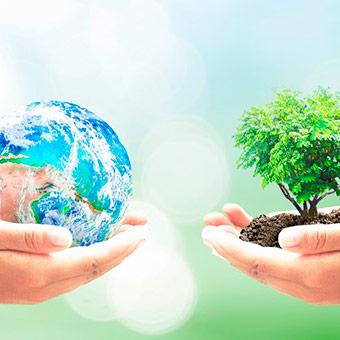 Услуги эколога для предприятия 2019