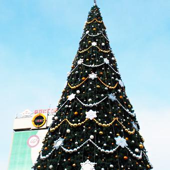 Где в Краснодаре установлены новогодние елки 2016?