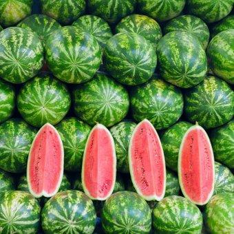 Сезонных фруктов пост! Что покупать на рынке в сентябре?