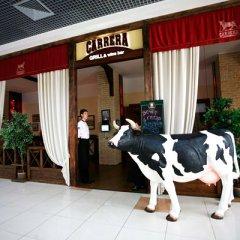 Ресторан Gril & Wine Bar Carrera в Краснодаре отзывы и фотографии